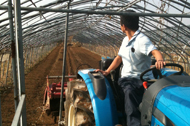 양파농사준비