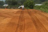 수세미농사