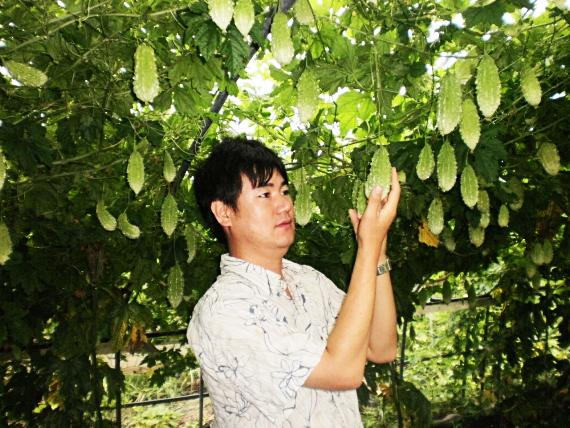 친환경 양원농장주