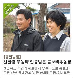 친환경 무농약 인증받은 곰보배추농장 동진농장