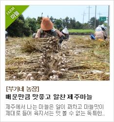 농촌진흥청이 인정한 탑프루트 감귤부문 우수상농장 사랑꽃농장