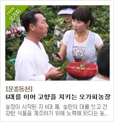 6대째 무농약 친환경 농사를 고집하는 운흥동천 오가피농장