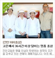 36시간 고온에서 달인 진안마이홍삼