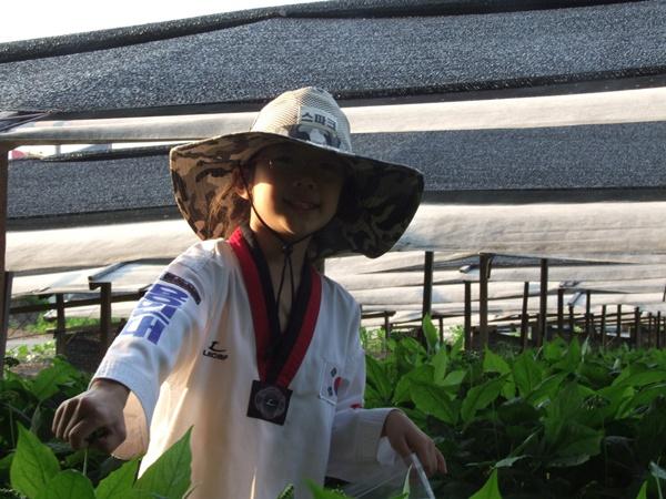 30여년의 노하우와 과학영농으로 탄생한 친환경 글로벌 인삼농가/놀뫼인삼